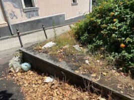"""Giarre, festa di San Vito Martire a Macchia """"tra rifiuti e degrado assoluto"""""""
