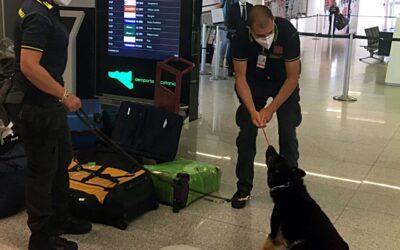 138 grammi di droga, in manette un soggetto presso l'aeroporto etneo