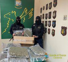 Traffico internazionale di sostanze stupefacenti, catturato narcos latitante